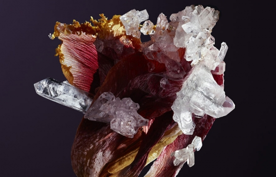 Flowers Embedded with Living Crystals
