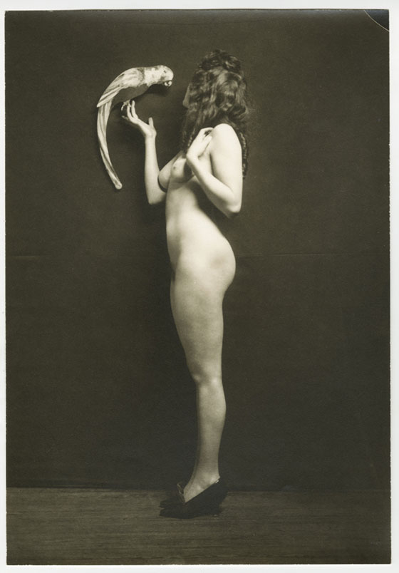 'Nude and Parrot' by Alfred Cheney Johnston
