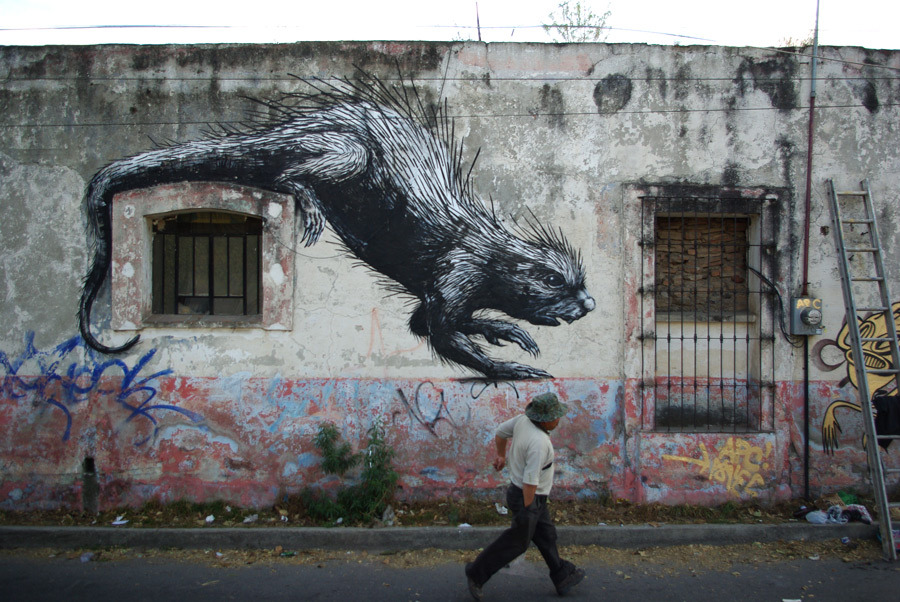 ROA-Cholula-porcupine-thx-christian-from-Milamores-IMGP7825_u_1000