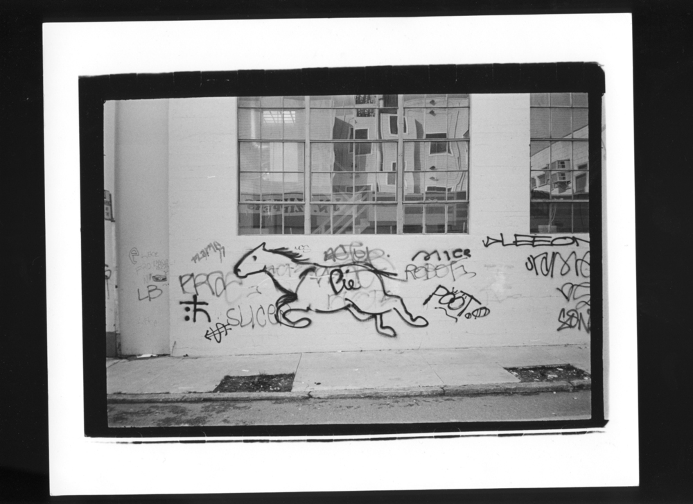 Click to enlarge image bill_daneil_tri-x-noise_11_20110615_1461988174.jpg