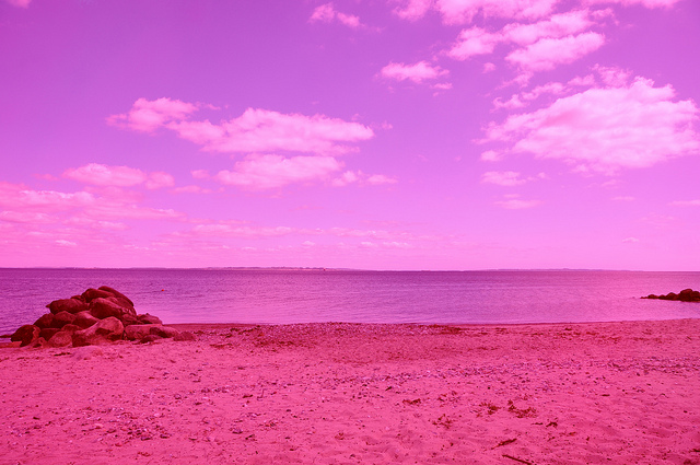 Sea Pink by Marc Moser in Denmark: marc_moser_4_20110617_1986584619.jpg