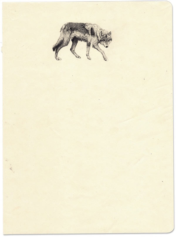 Amy Dover's Lone Wolf: loan-wolf-ay-dover.jpg