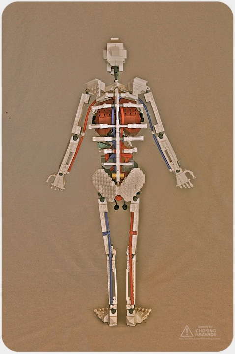Lego Skeleton by Clay Morrow: lego_skeleton_2_20110623_1712021681.jpg