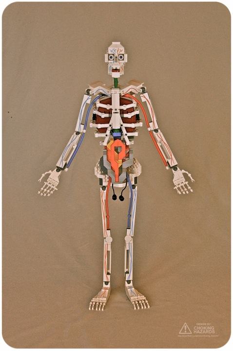 Lego Skeleton by Clay Morrow: lego_skeleton_7_20110623_1480565948.jpg