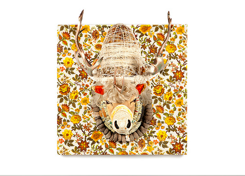 Reusing Reclaimed Taxidermy by Marcus Kenney: marcus_kenney_13_20110706_1684000195.png