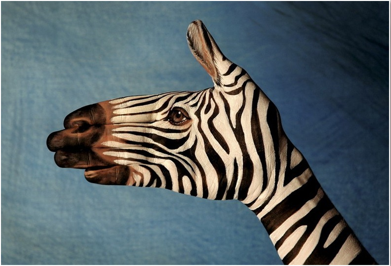 Handimals, aka Hand Art by Guido Daniele: hanimals_4_20110728_1423659636.png
