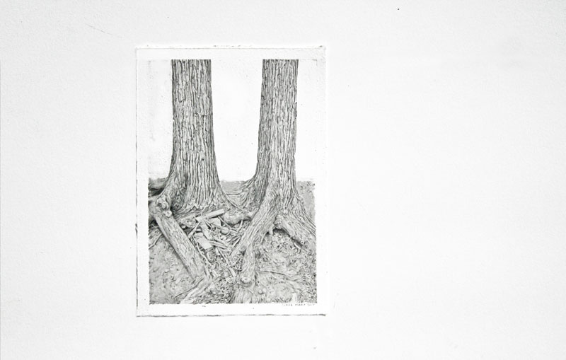 In Illustration: Claire Oswalt's Treeforms: claire_oswalt_8_20110825_1223560239.jpg