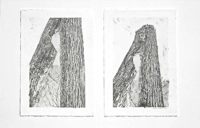 In Illustration: Claire Oswalt's Treeforms: claire_oswalt_9_20110825_1205477476.jpg