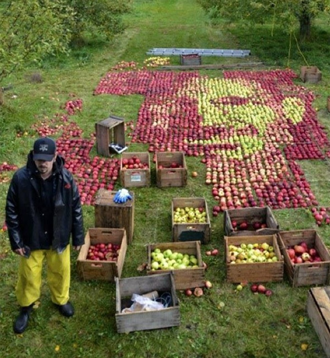 3750 Apples, One Portrait of Steve Jobs: steve_jobs_with_apples_5_20111025_1086587275.jpg