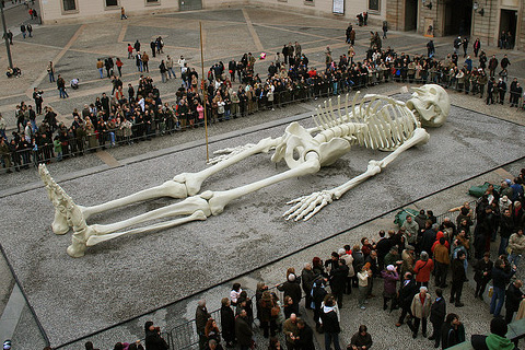 Gino de Dominicis' 28-meter Long Skeleton: gino_de_dominicis_4_20120129_1