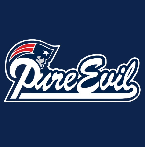 In Sports, Super Bowl Weekend Edition: Honest NFL Logos: honest_nfl_logos_1_20120203_1878655883.jpg