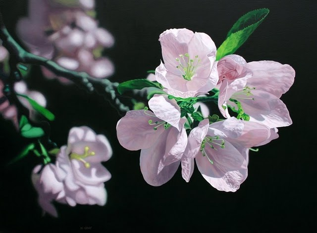 Hyperrealist Paintings by Jason de Graaf: jason_de_graaf_16_20120216_1136996957.jpg