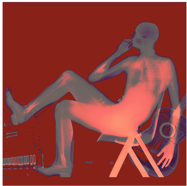 X-Ray Portrait Art by Xavier Lucchesi: xavier_lucchesi_14_20120319_1653635749.png