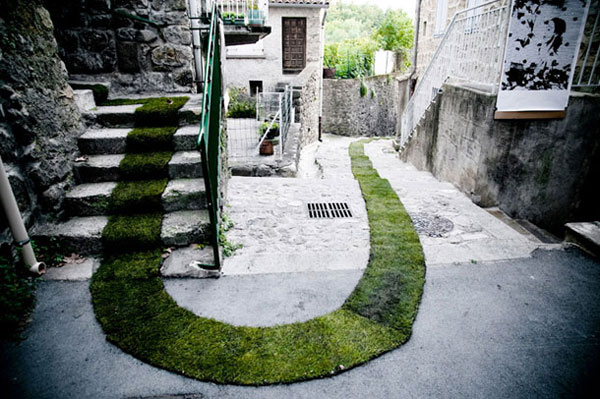 Grass Carpeted Streets: grass_carpet_1_20120401_1180683854.jpg