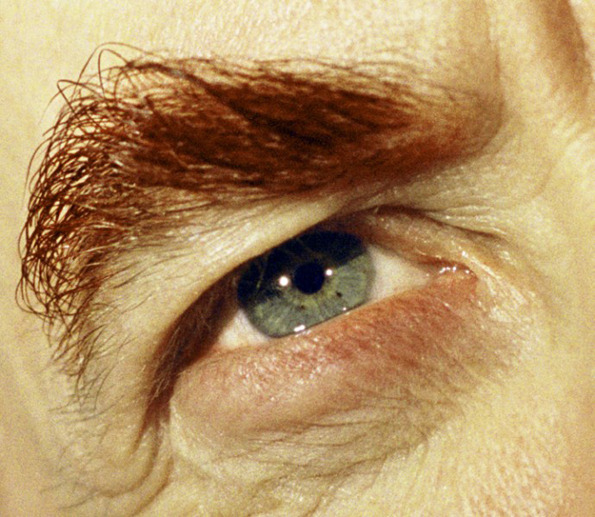 "Alex Prager ""Compulsion"" in Los Angeles, NYC, and London: alex_prager_compulsion_12_20120420_1370833007.jpg"