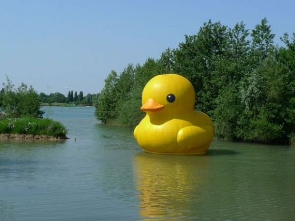 The Giant Rubber Duckie by Florentijn Hofman: rubber_duck_19_20120425_1343181680.jpg