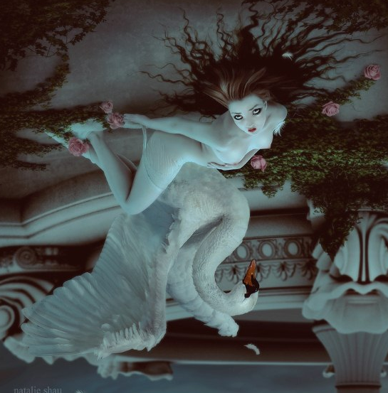 Surreal Works by Natalie Shau: natalieshau_12_20120505_1549202988.png