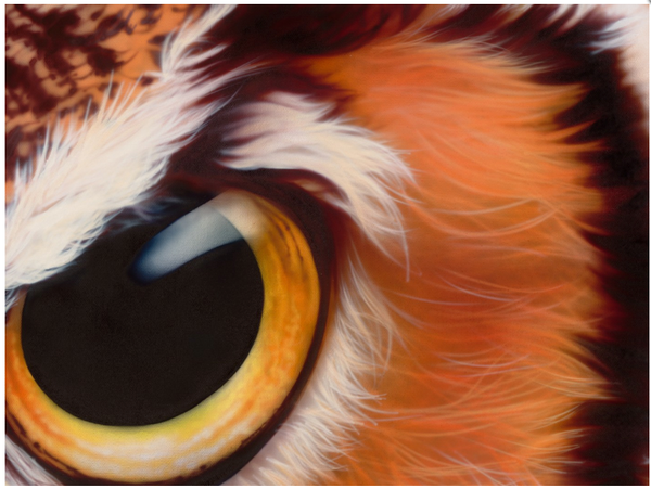 Airbrushed Animals by Eyan Higgins Jones: Juxtapoz-Airbrush001.png