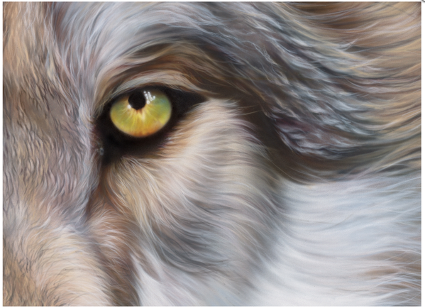 Airbrushed Animals by Eyan Higgins Jones: Juxtapoz-Airbrush004.png