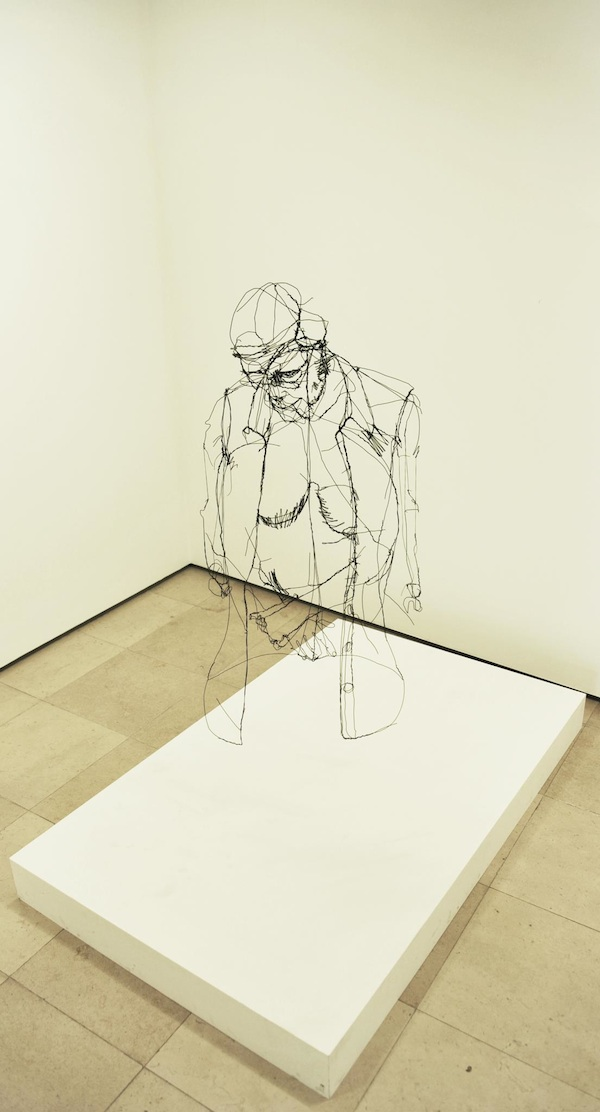 """Floating"" Wire Sculptures by David Oliveira: david_oliveira_18_20120608_1921870345.jpg"