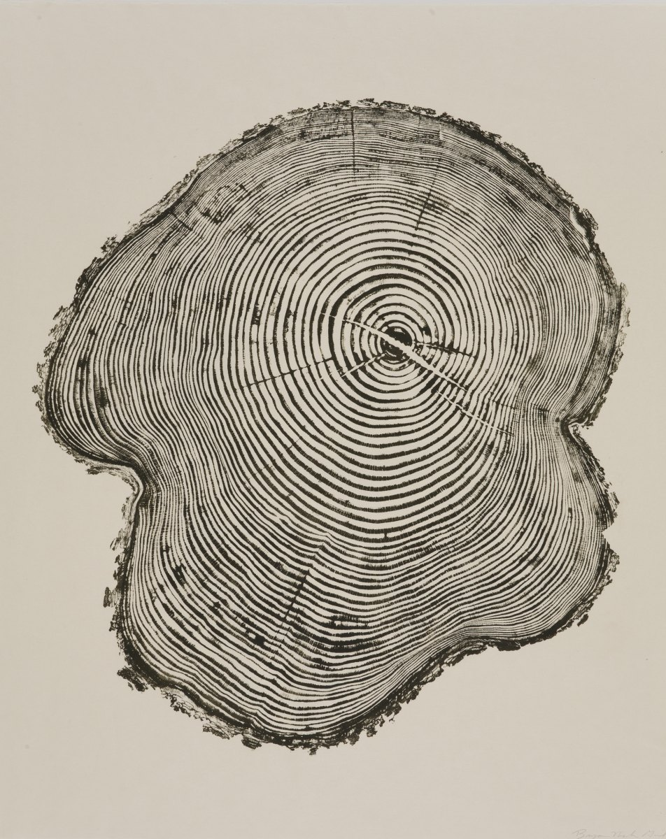 Woodcut Imprints by Bryan Nash Gill: bryan_nash_gill_14_20120613_1984296525.jpg