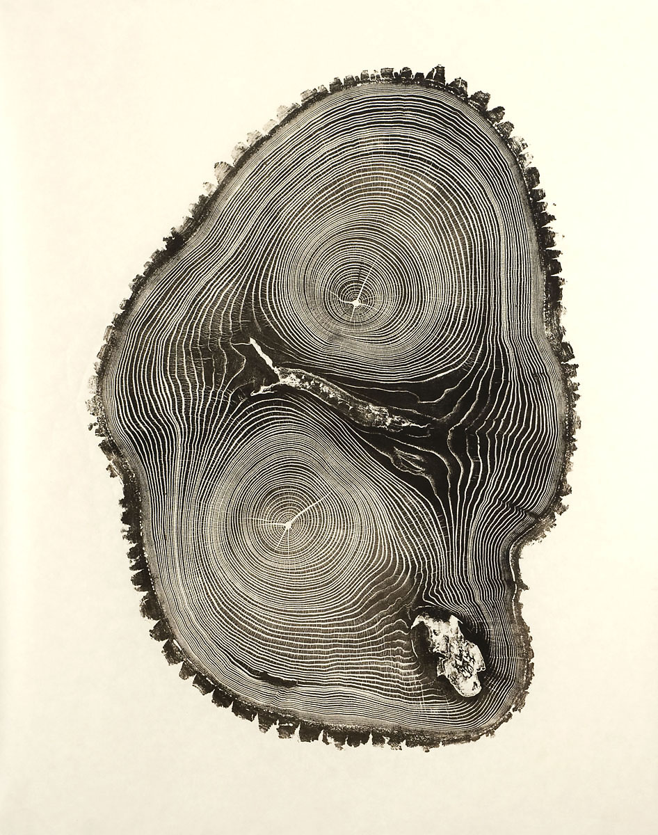 Woodcut Imprints by Bryan Nash Gill: bryan_nash_gill_20_20120613_1143200940.jpg