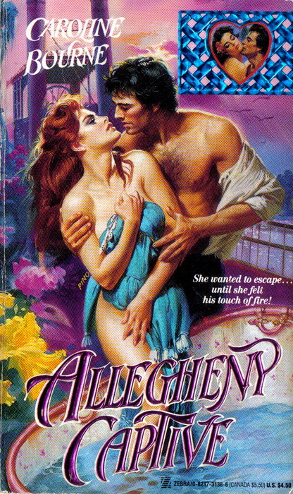 Romance Novel Fantasies...: romance_novels_13_20120621_1727856892.jpg
