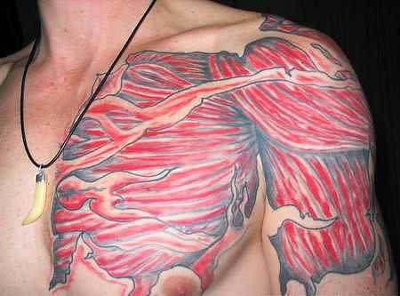 A Series of Anatomical Tattoos: anatomy_tattoos_20_20120628_1055182306.jpg