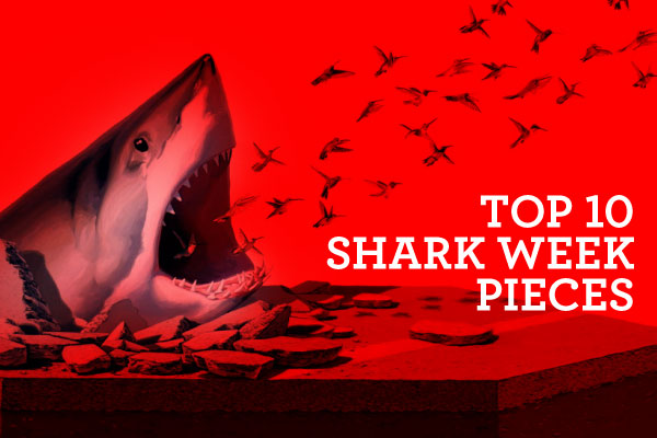 Top 10 Shark Week Pieces: 01.jpg