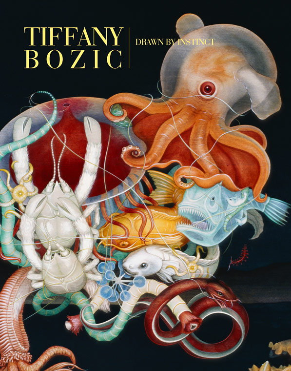 "New Book: Tiffany Bozic ""Drawn by Instinct"": bozic_book_1_20120829_1026480621.jpg"