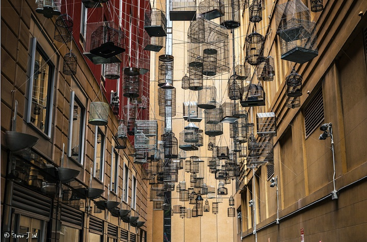 Suspended Birdcages in Sydney, Australia: sydneys_angel_place_16_20121029_1485491459.jpeg