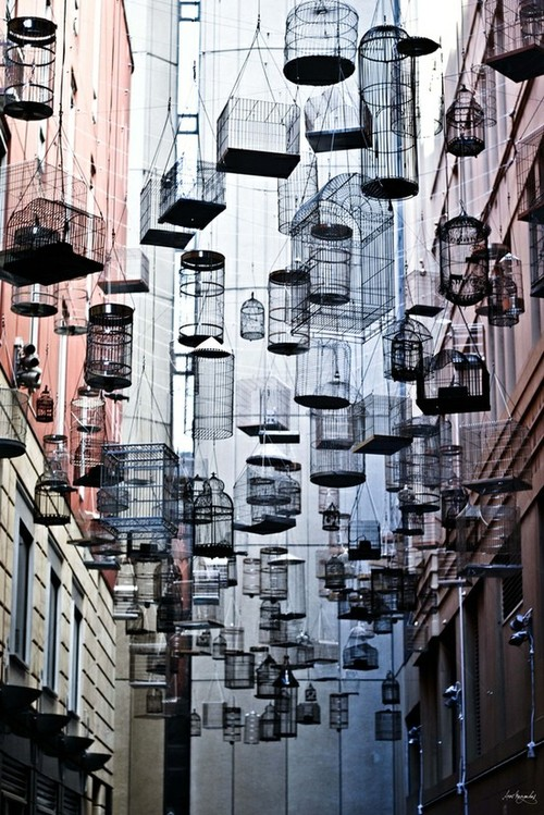 Suspended Birdcages in Sydney, Australia: sydneys_angel_place_1_20121029_1272479271.jpeg