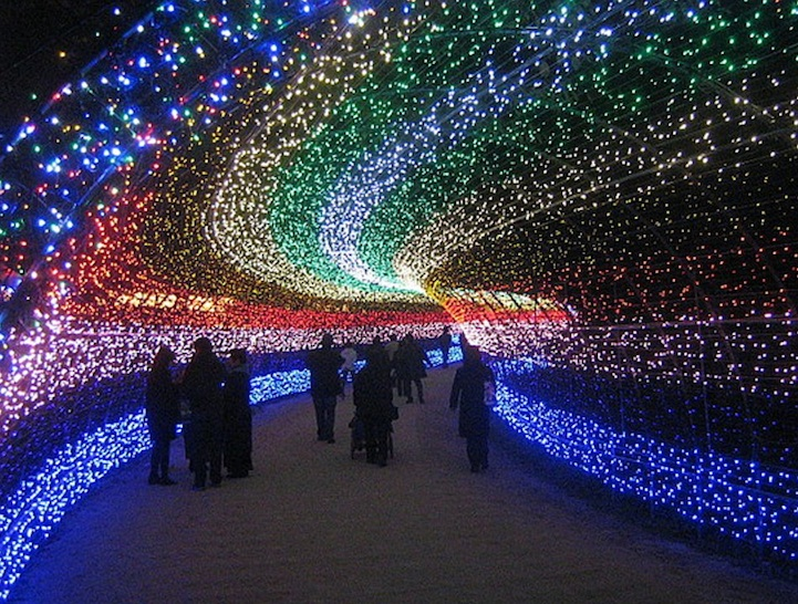 Winter Illuminations: Light Festival in Japan: nabana_no_sato_7_20121104_1660042004.jpeg