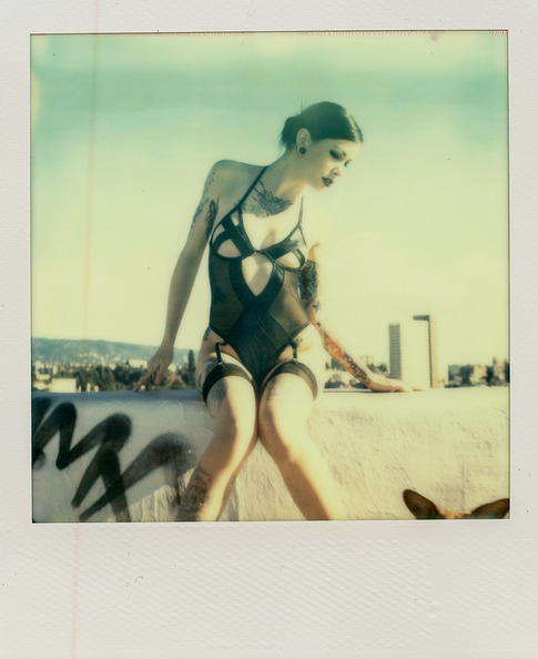 Derek Woods: Beauty and Poloroids: dtwoods_9_20130206_1124134457.png