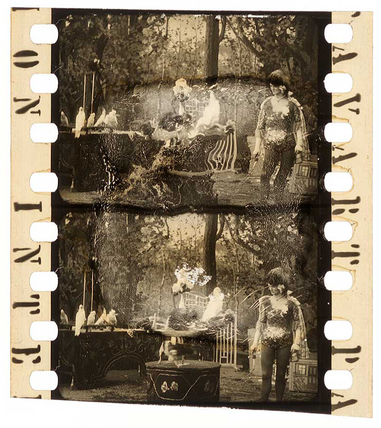 Decomposed Nitrate Film Clippings from the Turconi Collection: the_david_turconi_project_19_20130219_1427757687.jpg