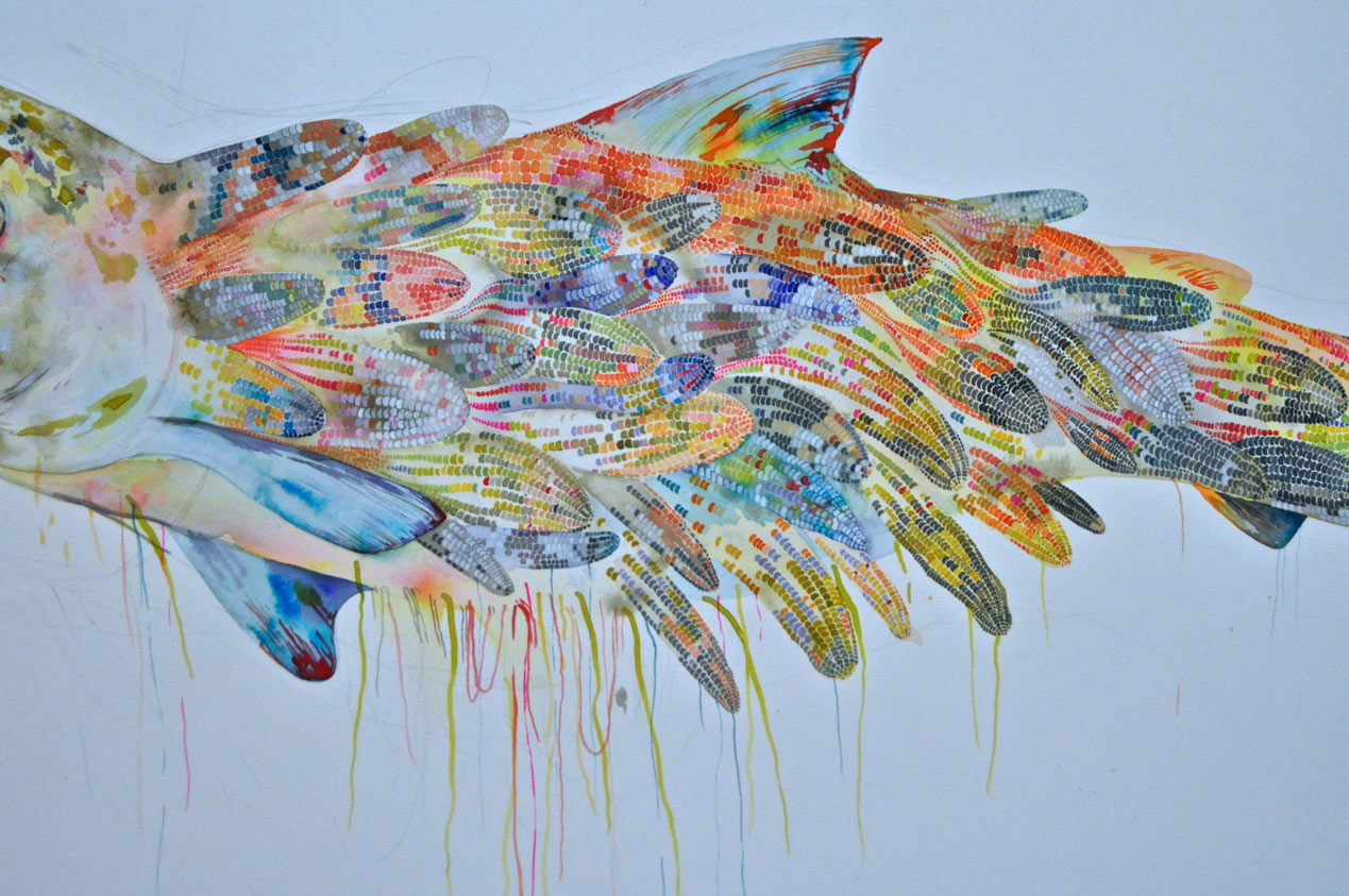 Illustrations and Paintings by Megan Diddie: fish2.jpg