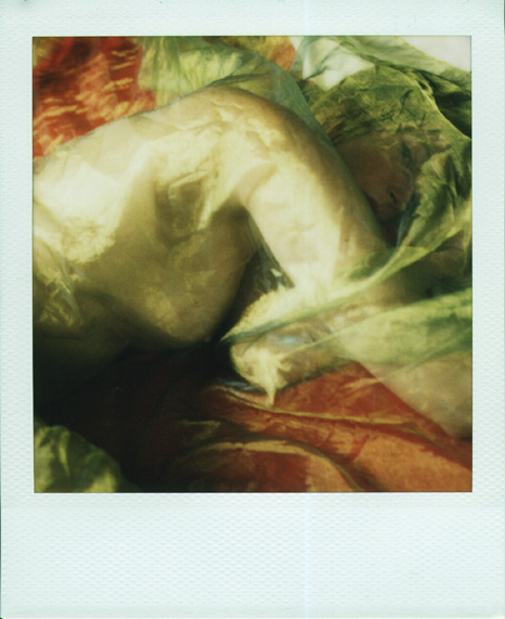 Kata's Provocative Polaroids: pictures.jpeg