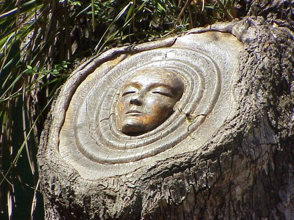 Living Tree Spirit Carvings by Keith Jennings: keithjenningstreespirits2.jpg