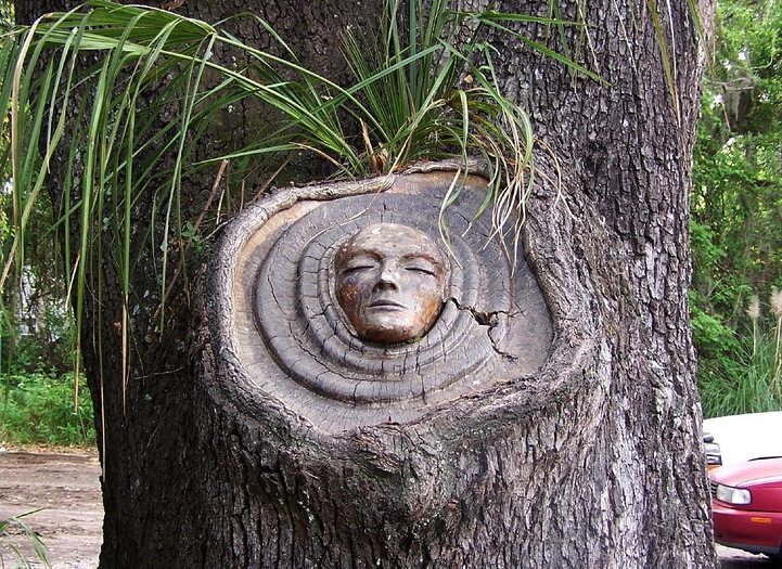 Living Tree Spirit Carvings by Keith Jennings: keithjenningstreespirits3.jpg