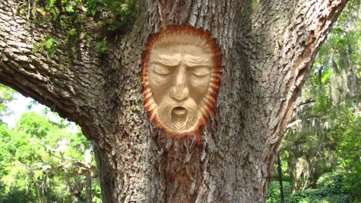 Living Tree Spirit Carvings by Keith Jennings: keithjenningstreespirits5.jpg
