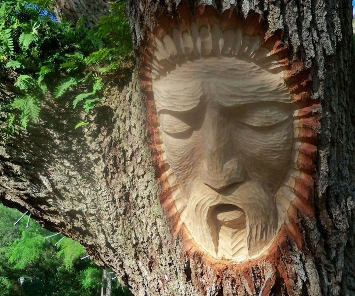 Living Tree Spirit Carvings by Keith Jennings: keithjenningstreespirits6.jpg