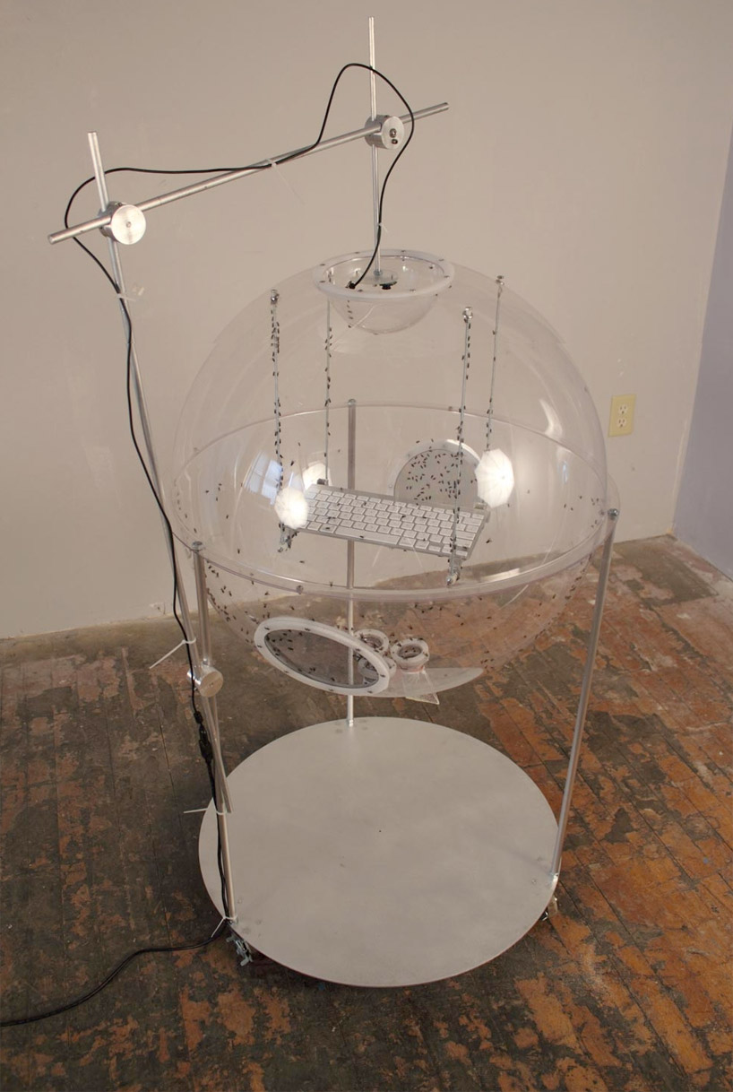"David Bowen's Installation ""allows"" Houseflies to Tweet: tweetfly02.jpg"