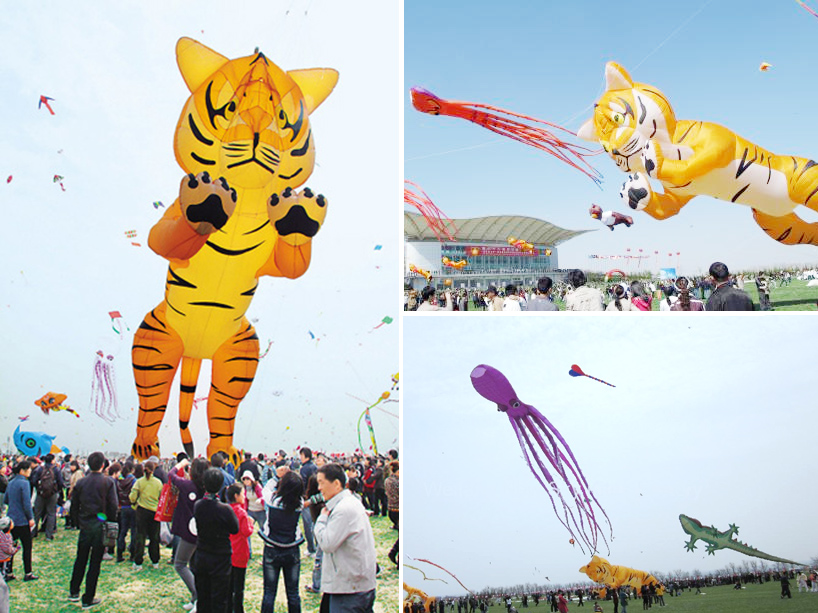The 30th Annual Weifang International Kite Festival: tigerkite.jpg