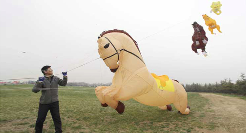 The 30th Annual Weifang International Kite Festival: weifangkitefestival1.jpg