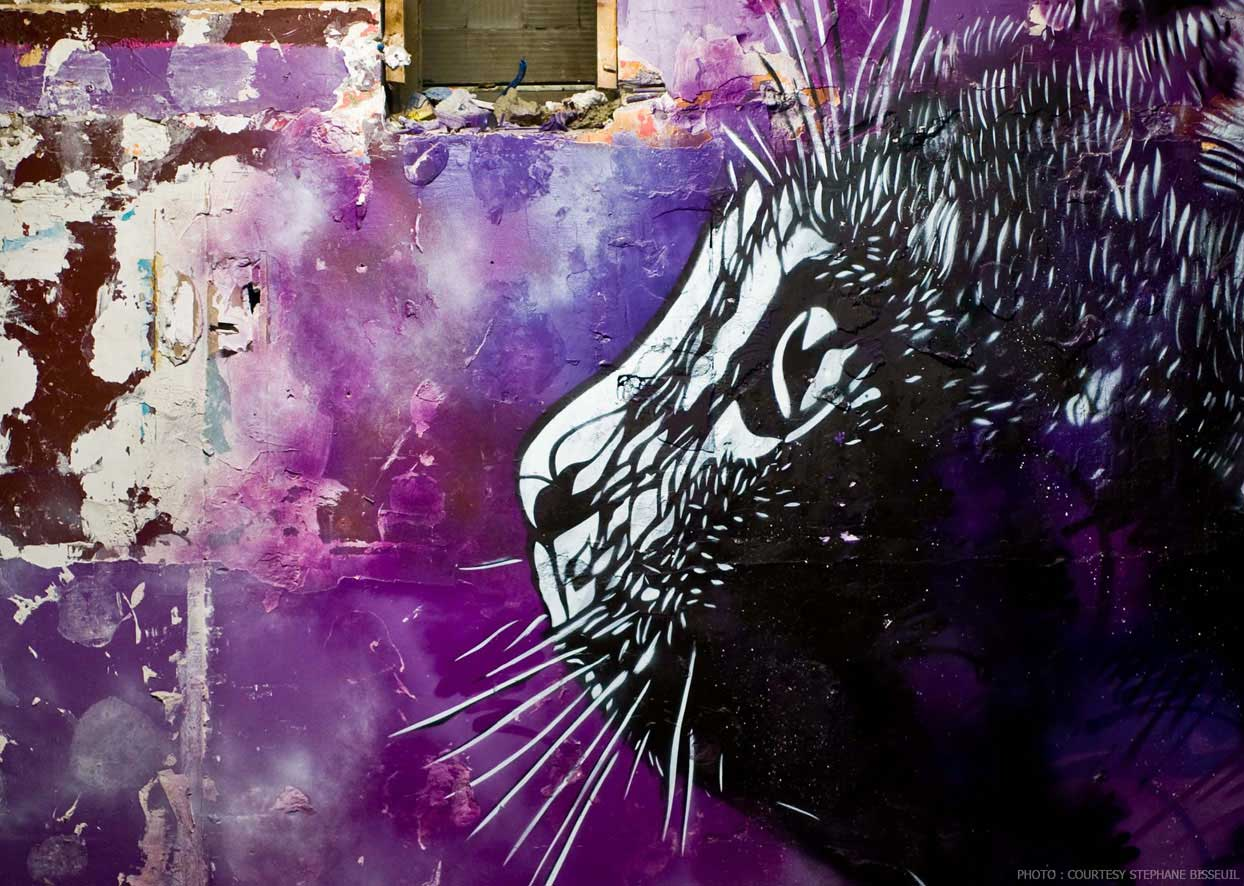Street Artists Given Run of Condemned Les Bains Nightclub: C215-Les-Bains-photo-courtesy-Stephane-Bisseuil-4.jpg