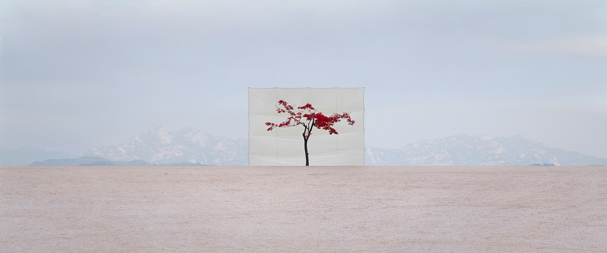 Photographs by Myoung Ho Lee: large-mhl-06.jpg