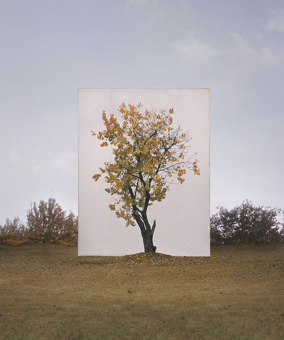Photographs by Myoung Ho Lee: large-mhl-10.jpg