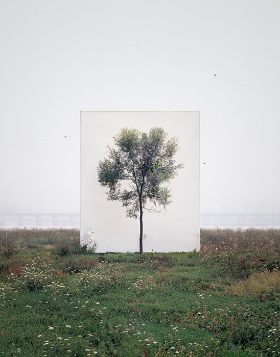 Photographs by Myoung Ho Lee: large-mhl-12.jpg