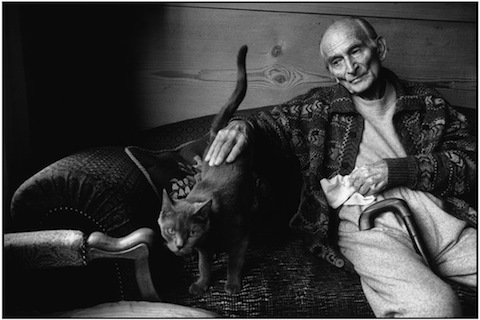 Famous Artists and Their Cats: balthus.jpg