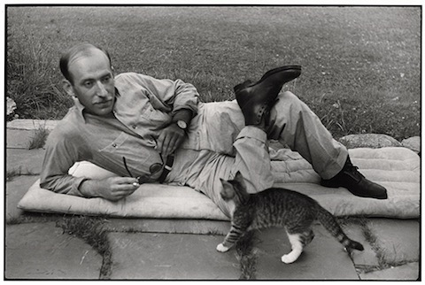 Famous Artists and Their Cats: bresson.jpg